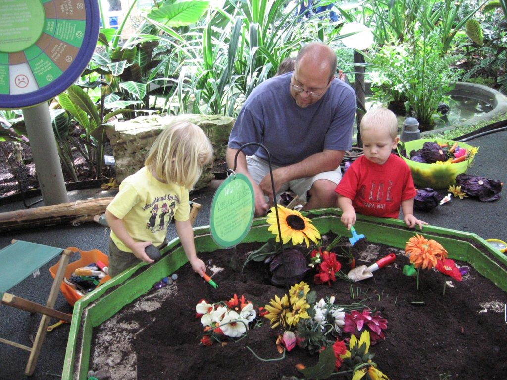 Photo by Jamie Bartosch/Suburban TravelingMom The Garfield Park Conservatory is a hidden gem and a free family activity.