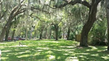 One of Georgia's Golden Isles, Jekyll Island is home to a treasure of fun and free activities just waiting for families to discover.