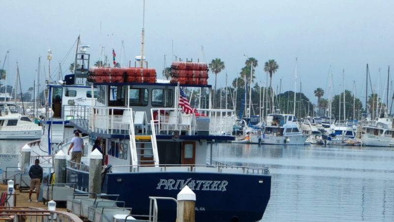 San Diego Whale Watching Privateer boat