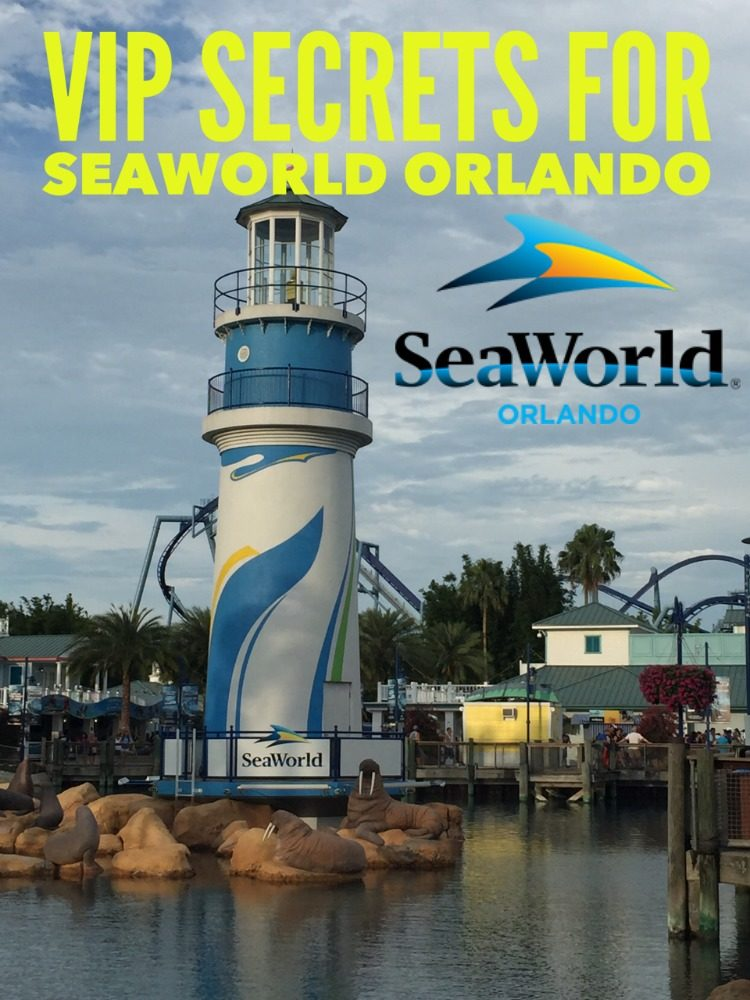12 VIP Tips for Families Visiting SeaWorld Orlando - Know Before You Go!