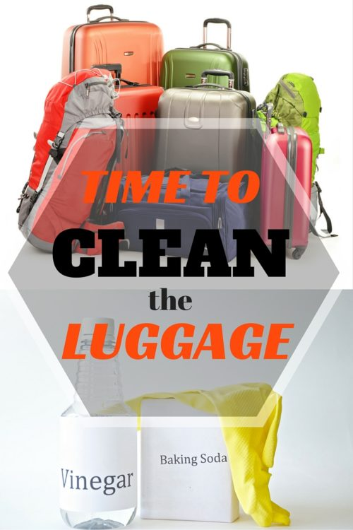 why it's important to clean your luggage