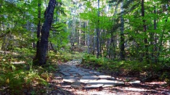 things to do in freeport maine like take a hike