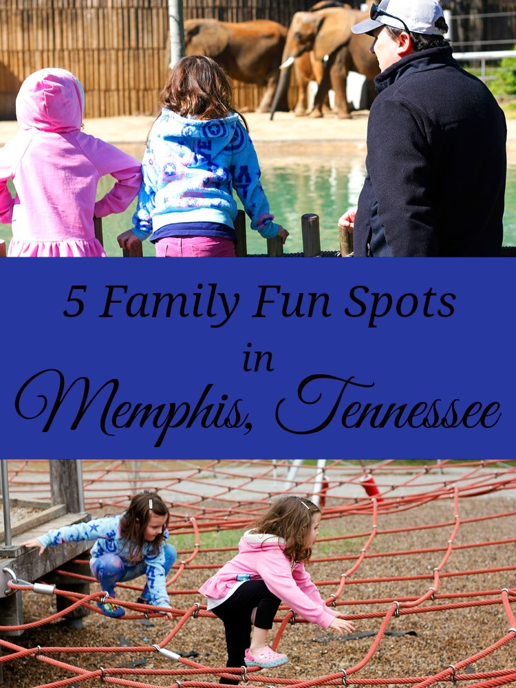 If you're wondering what to do with kids in Memphis, Tennessee, try these 5 things for a fun family adventure.