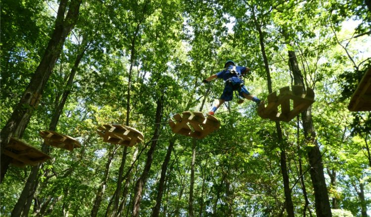 Another of the things to do with kids in Indianapolis - Koweewi Aerial Park