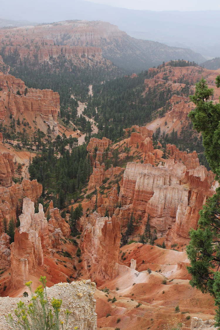 Bryce Canyon National Park for kids, Hike for kids in Bryce Canyon, Utah parks for kids,