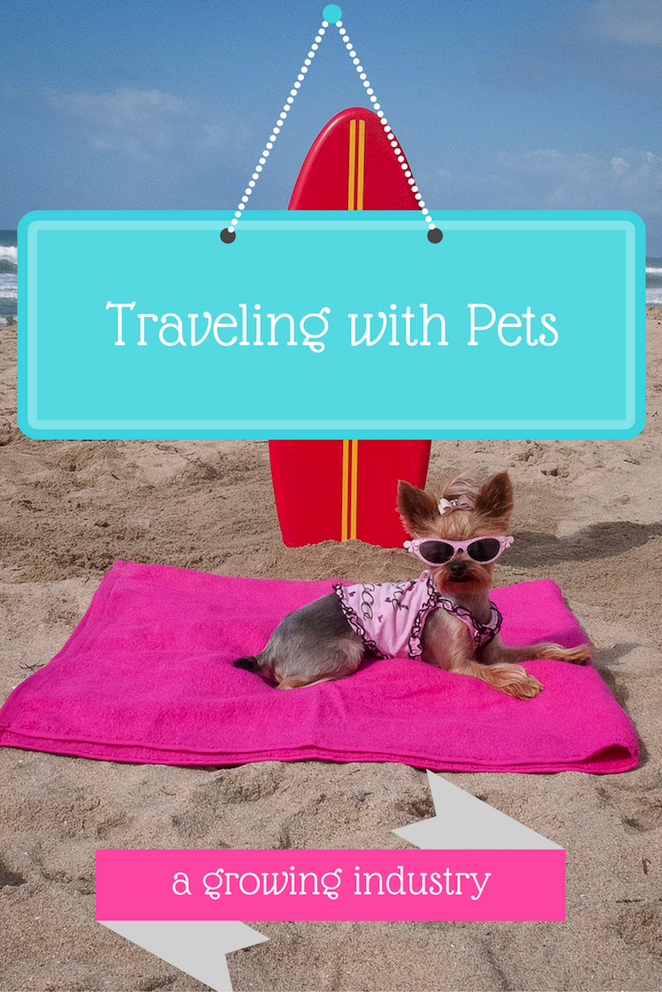 Bring the pets! Pet travel options continue to grow