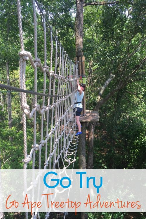 Go Try Go Ape Treetop Adventures