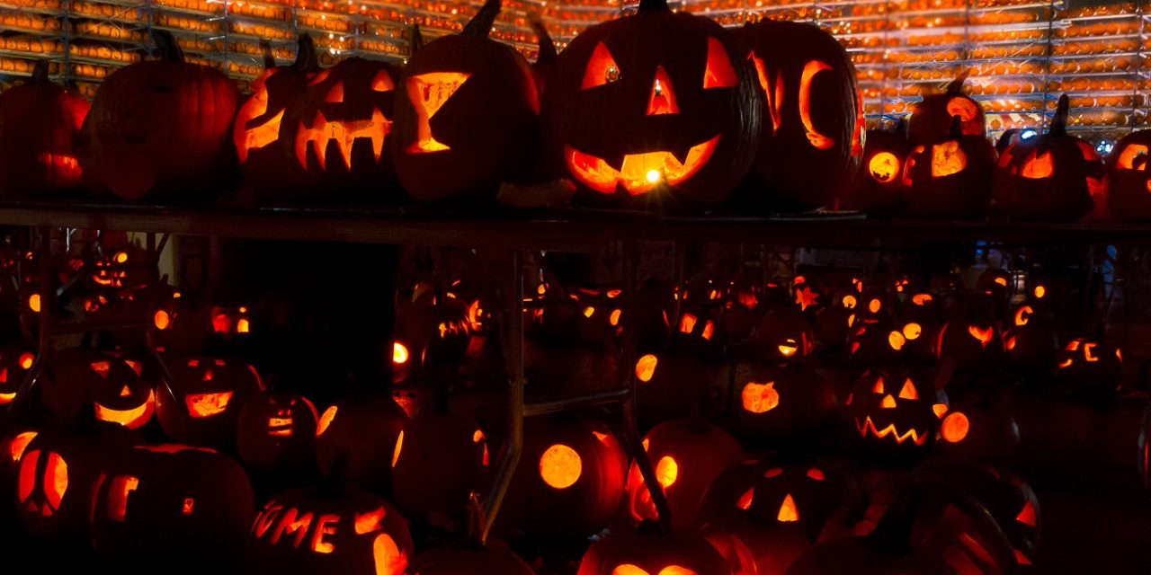30,581 carved, lit pumpkins? See at The Great Highwood Pumpkin Festival
