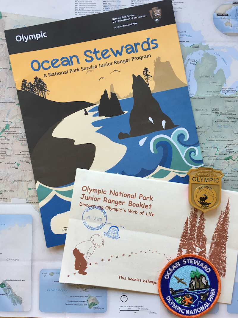 Olympic National Park with kids, Ocean Stewards Junior Ranger Badge, tide pools with kids