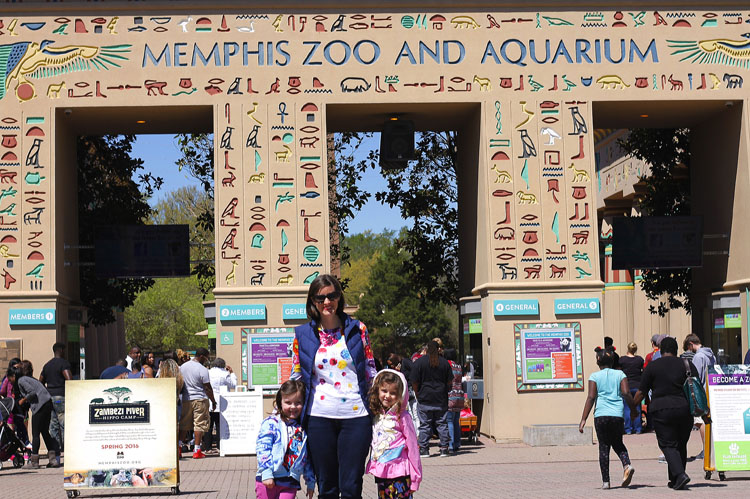 Families of all ages will appreciate the expansive fun to be had at the Memphis Zoo.