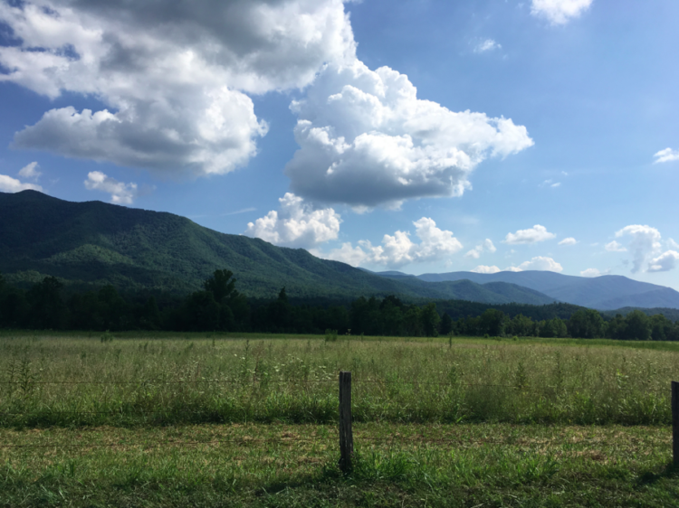 Historic Cades Cove Loop - Great Smoky Mountains National Park