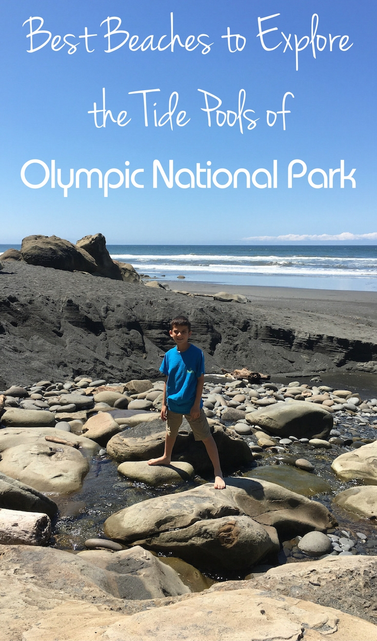 Spend several days exploring Olympic National Park, it's impossible to see in one day.