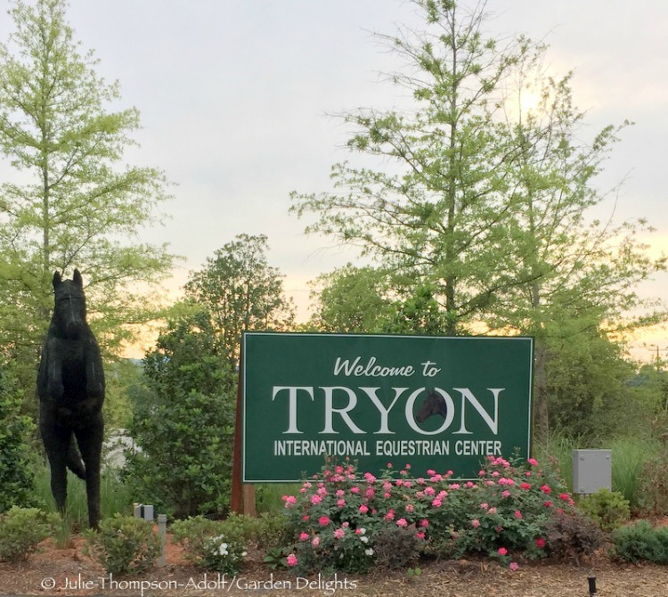 Horse riding heaven at Tryon International Equestrian Center in North Carolina.