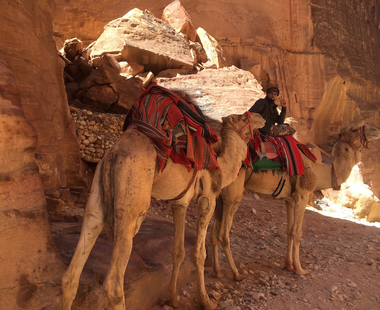 Enter ancient city of Petra through a narrow siq.