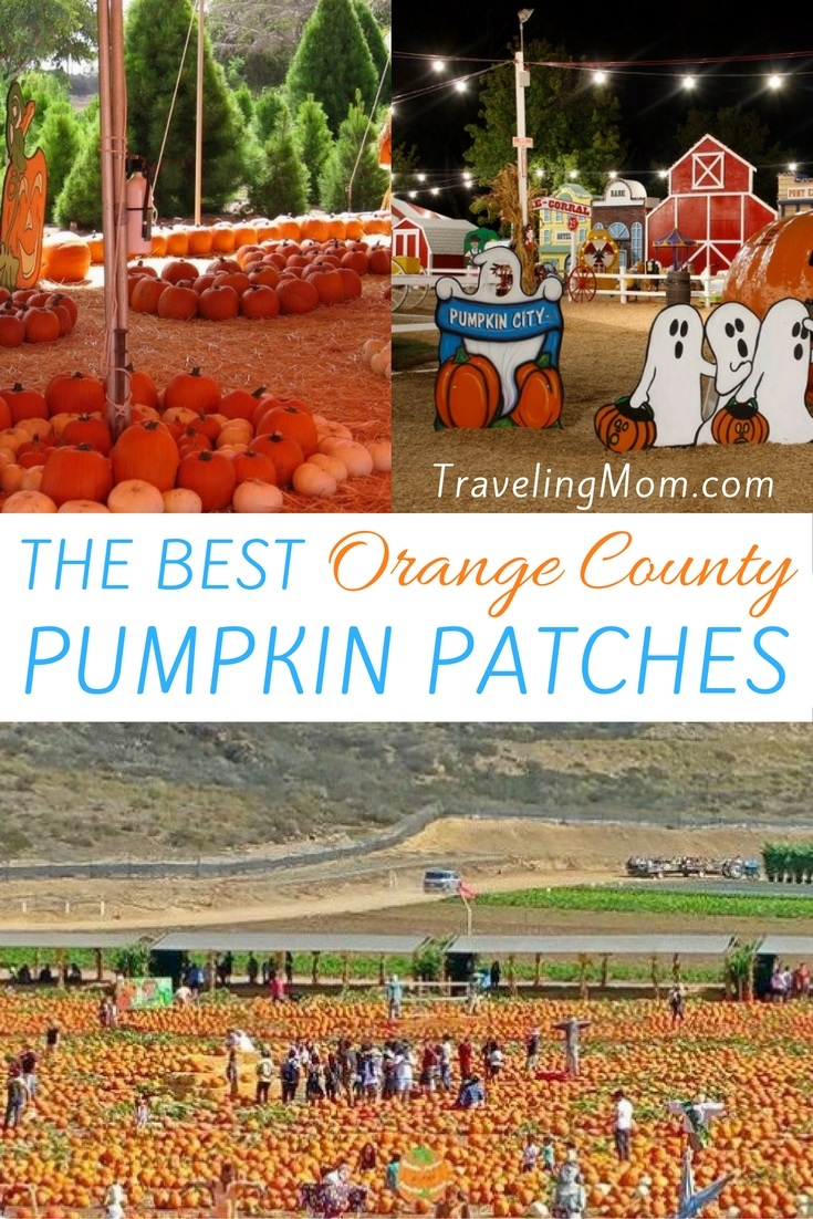 Family Friendly Pumpkin Patches in Orange County