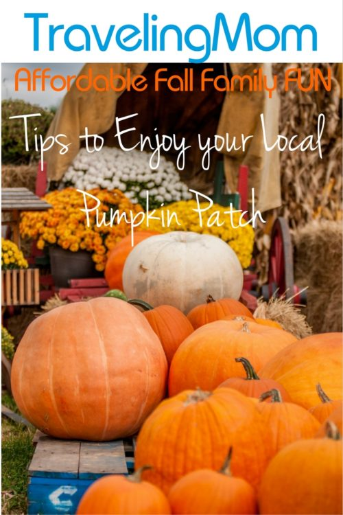 Tips to Enjoy Your Local Pumpkin Patch - Affordable Family Fun.