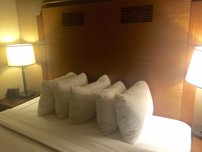 The Grand Hyatt Seattle combines luxury and convenience, a five star experience though and through. Check out why I didn't want to check out!