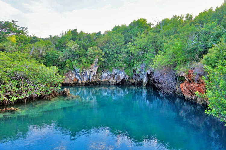 Walsingham Nature Reserve in Bermuda offers underground caves you can swim in during your active spring break vacation.