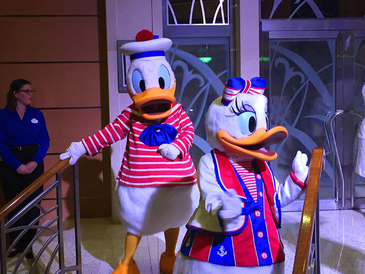 Meeting Donald and Daisy through your vacation is very easy.