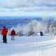 Tips for first time ski families