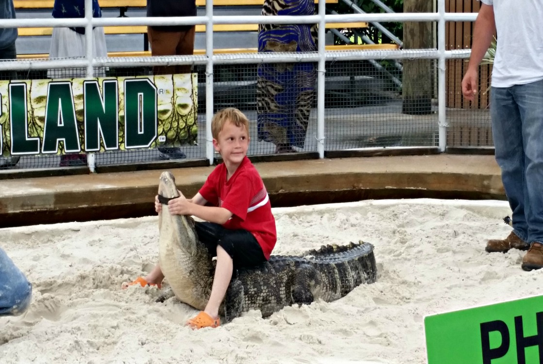 Gatorland offers a ridiculously fun photo op! Get your picture made and tell your friends you wrassled that gator!