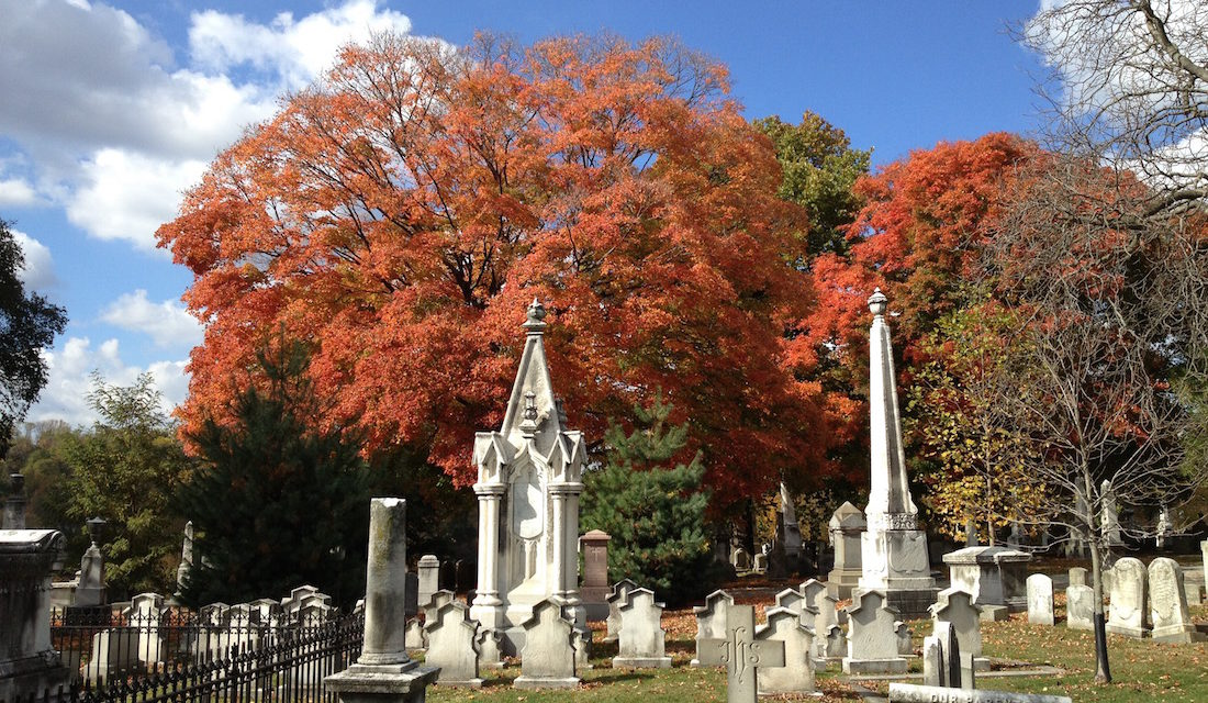 Fall Foliage in Philadelphia – Mostly for Free