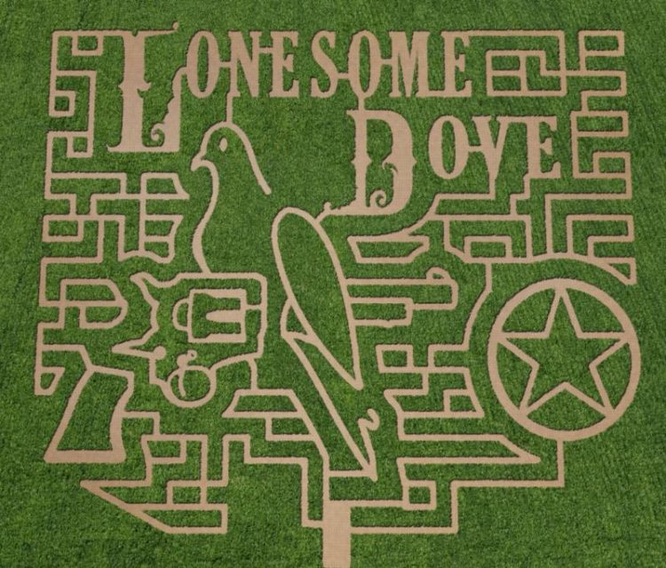 Corn mazes are super popular! These top Texas corn mazes have elaborate themes, take a while to get through, and are fun for the whole family.
