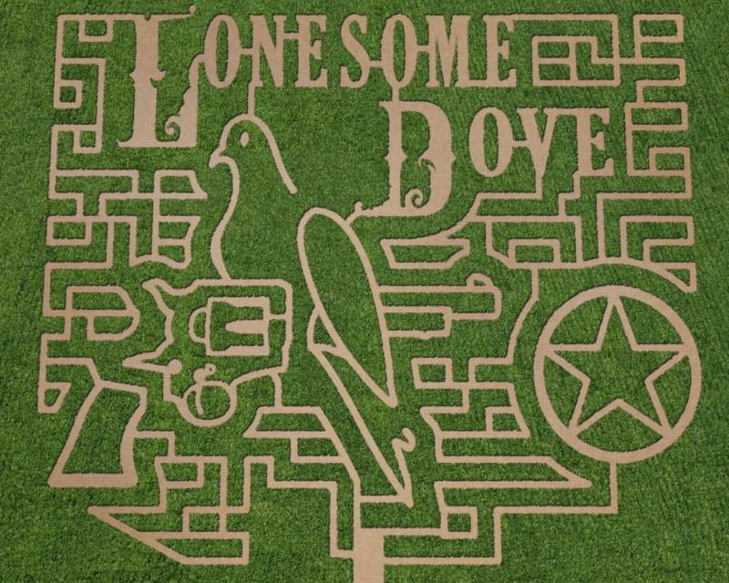 5 Texas Corn Mazes You Have to See to Believe