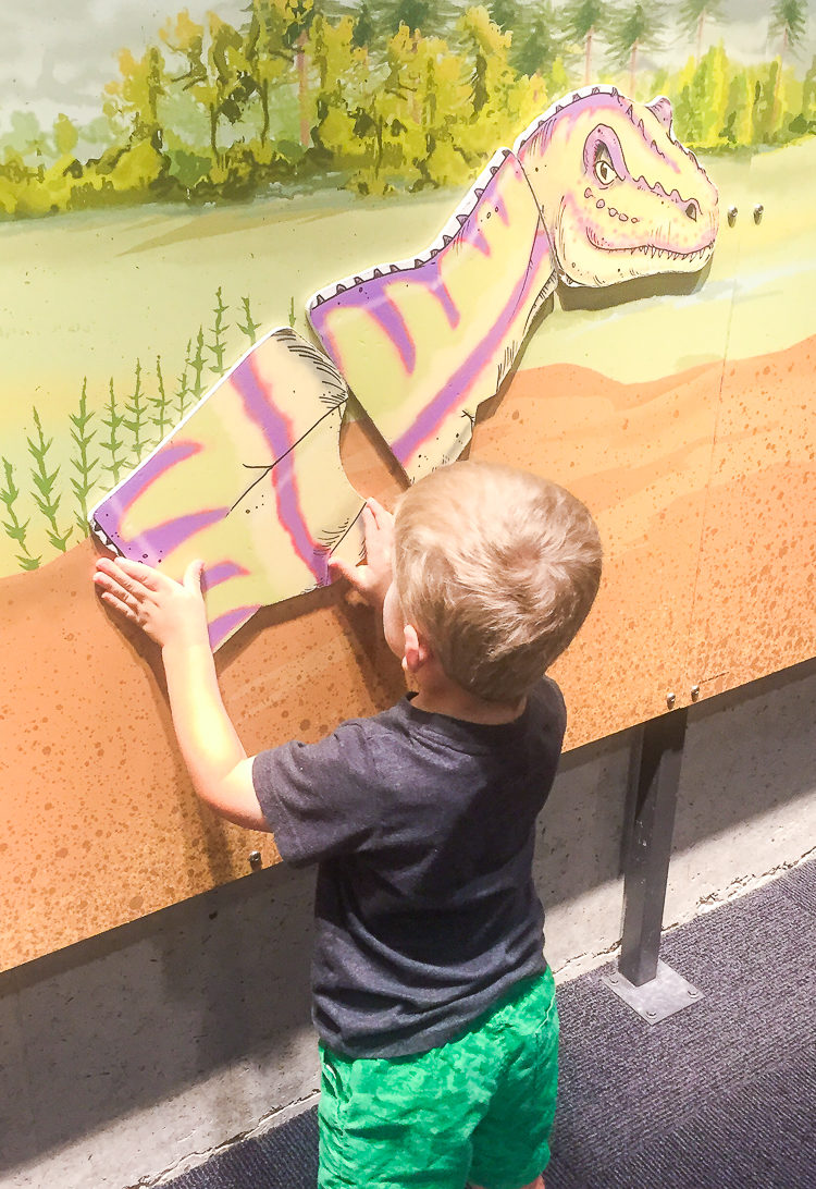 The Perot Museum in Dallas, Texas is a one of a kind location full of interactive, hands-on exhibits that will allow you to experience science.