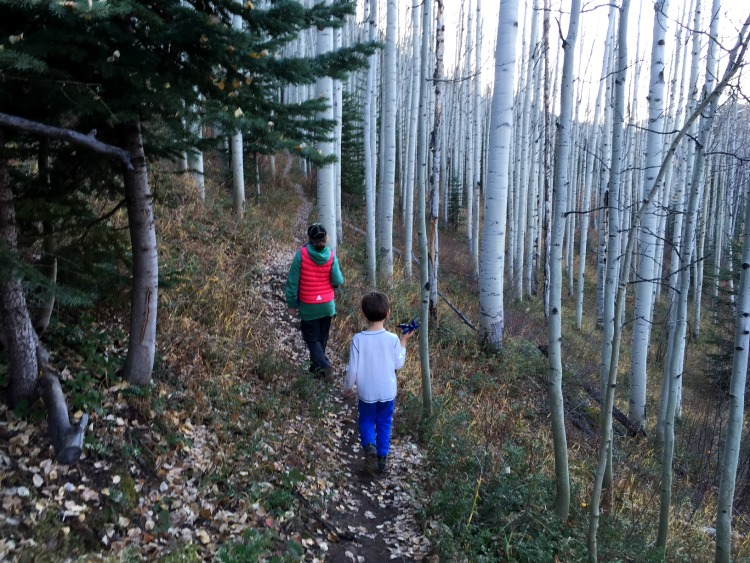 sonnenalp hotel vail family-hiking