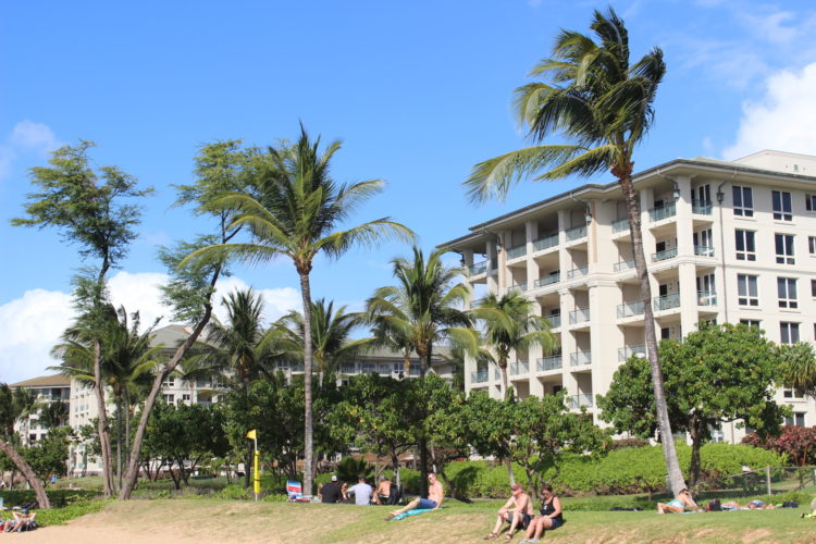 Our Research TravelingMom has some tips for how to make your Hawaiian vacation the best ever! Do you agree with her tips?