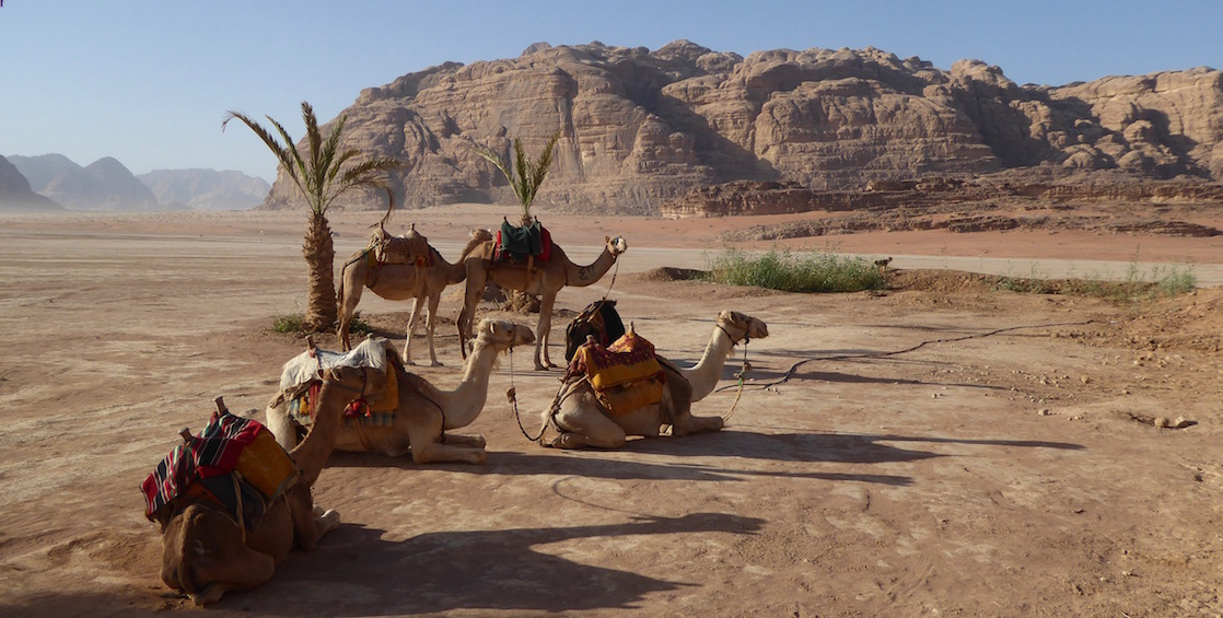 Travel to Jordan - for the first time, or on a return trip - to fully immerse yourself in all of the culture.