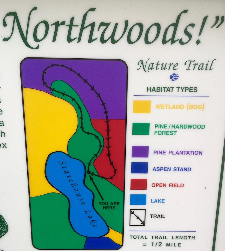 Colors designate trails as well as autumn leaves in the forests of Wisconsin Northwoods.