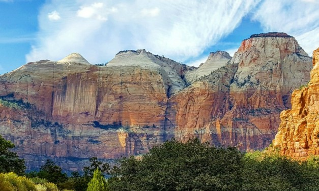 This Is Why Your Kids Will Love Zion National Park