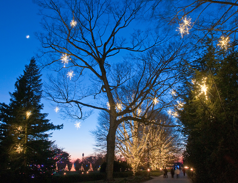 Christmas lights at Longwood Gardens in the Northeast USA - TravelingMom