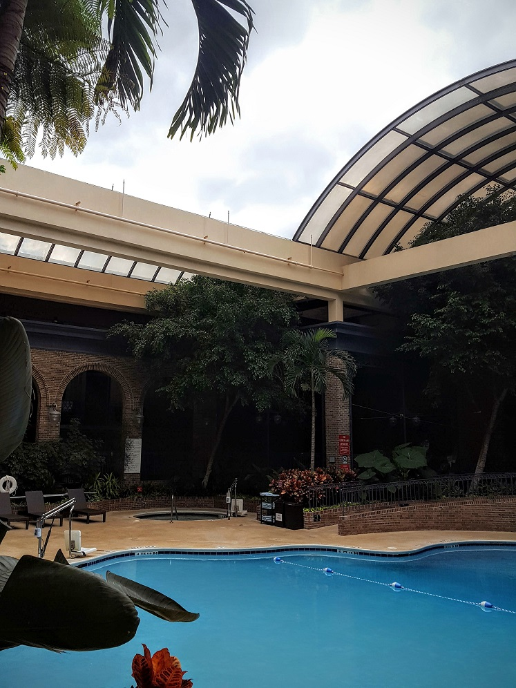 One of 6 family friendly Atlanta Hotels: the Sheraton Atlanta features an indoor/outdoor pool with a retractable roof.