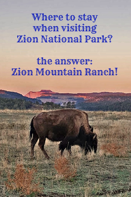 Zion Mountain Ranch, at the east entrance of Zion National Park in Utah, delivers a superb blend of the Old Western Charm and modern conveniences.