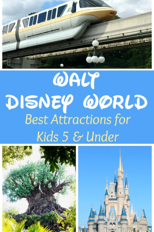 Taking young children to Disney World doesn't have to be a pain! Planning and preparation are key to having a great vacation. Read our best attrcctions for kids under 5.