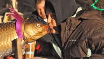 Kiss the carps during the New Years celebration in Prairie due Chien, WI