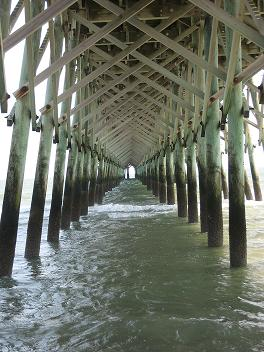 The pier at Folly Beach, one of the Charleston area beaches.