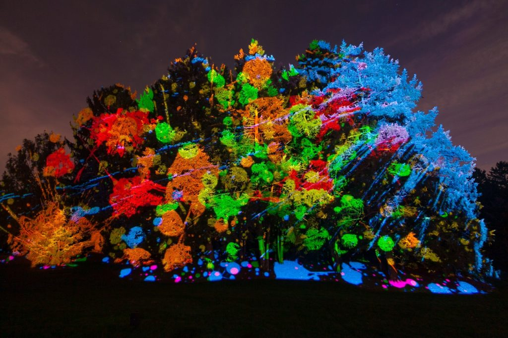 Holiday light delights of Morton Arboretum Illuminations 2016