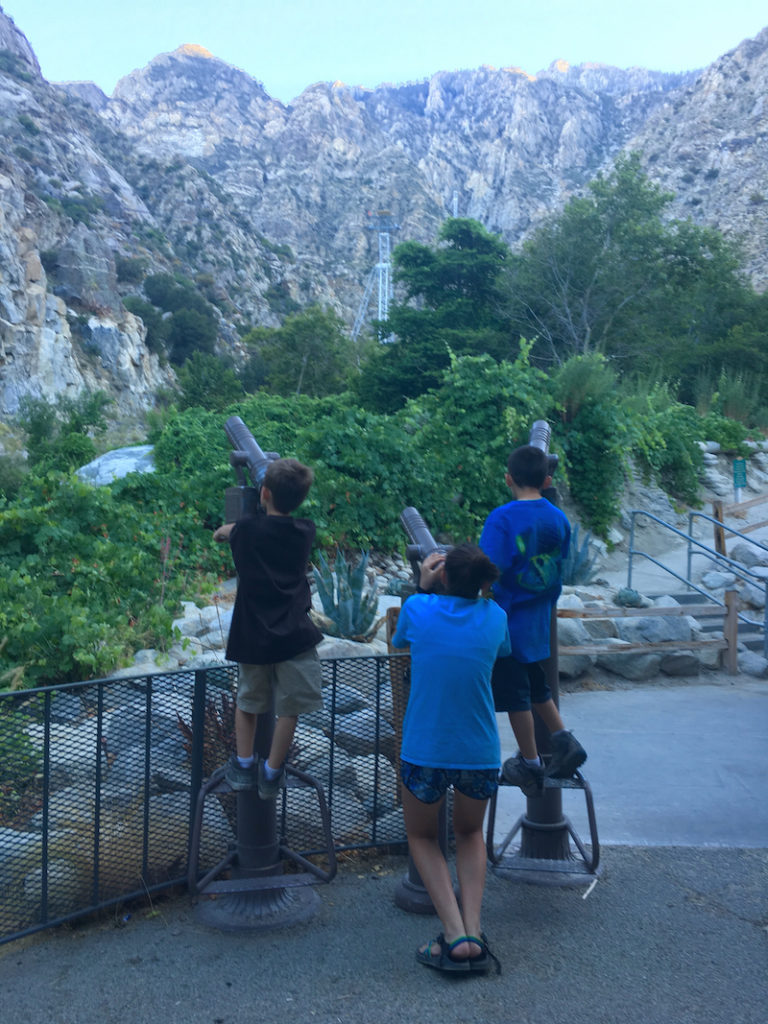 exploring Palm Springs with kids, national parks sites in California, places to cool off in Palm Springs,