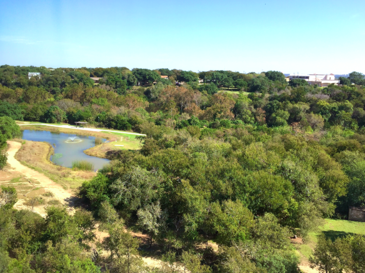 View from my room in Georgetown, Texas.