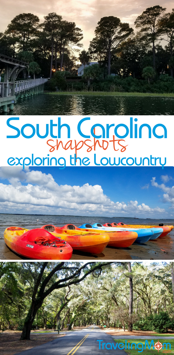 Head out and explore the Lowcountry of South Carolina! Go for a drive and check out the scenery, kayak at Hilton Head and spot dolphins and pelicans, or take a bike ride and look for alligators!