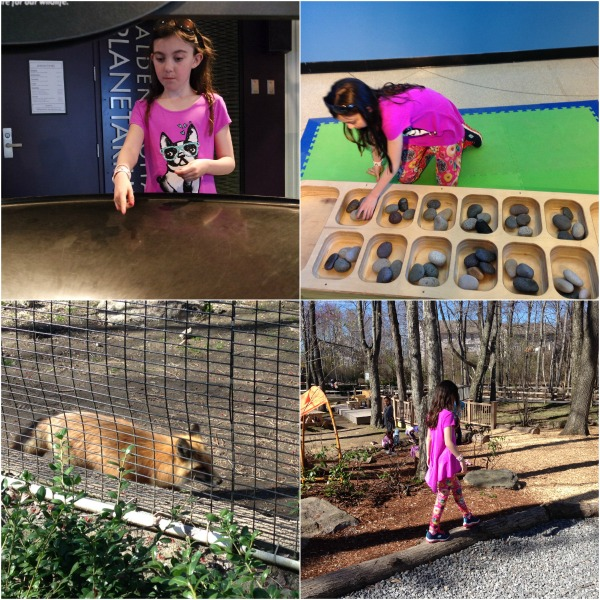 About 45 minutes west of Boston, Central Massachusetts offers a plethora of activities for families with kids of all ages, from farms to butterfly gardens.