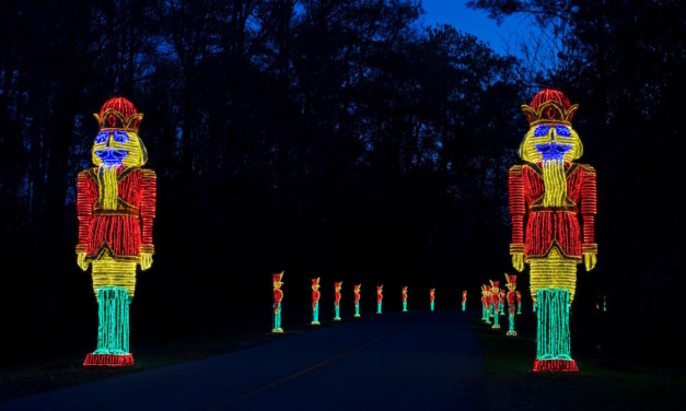 Southeast Holiday Lights Celebrate Gardens, Regional Traditions Too