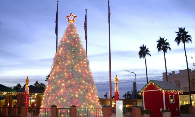 10 Family Friendly Ways to Spend the Holidays in Arizona