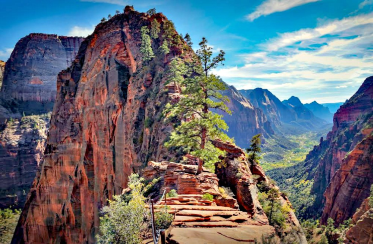 Angels Landing hike in Utah's Zion National Park is not for everyone, but for those who complete it is a life time adventure.