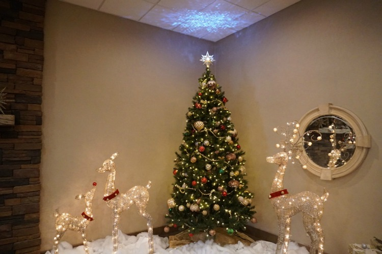 Holiday decorations in the winter are another reason why the DoubleTree is a family friendly hotel in Flagstaff.