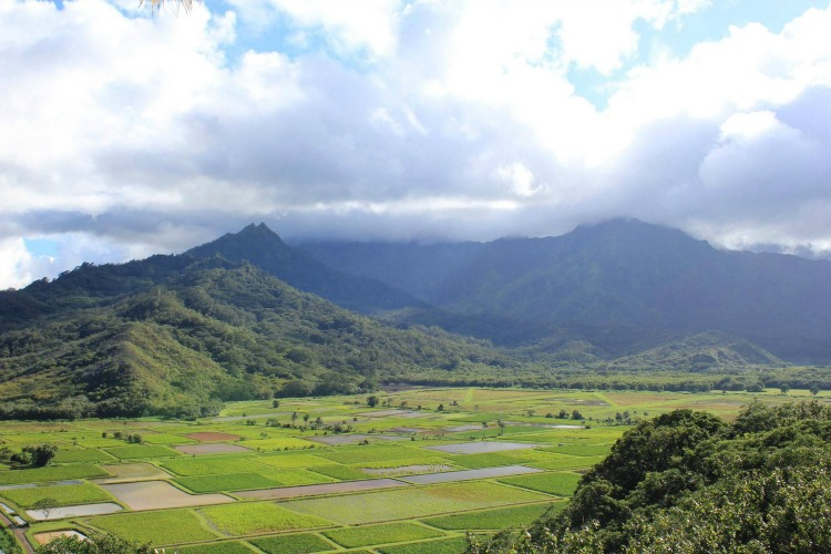 There are plenty of things to do in Kauai Hawaii with kids, including hiking, family friendly restaurants, and staying at Kauai resorts or residences.